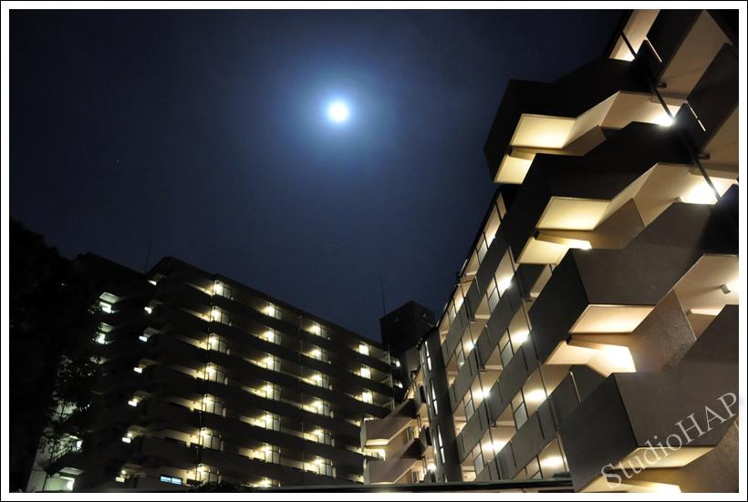 2011-03-20-1_9165.jpg