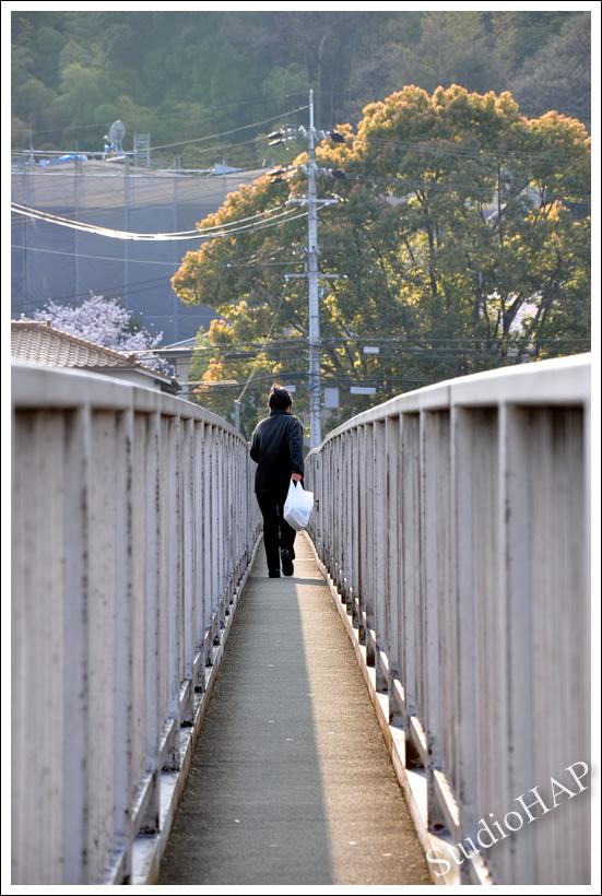 2011-04-08-1_0115.jpg