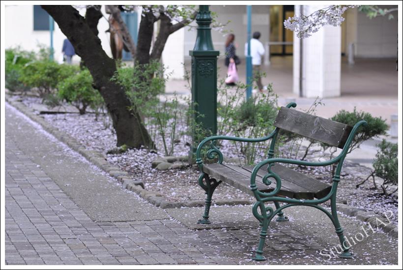 2011-04-11-1_0355.jpg