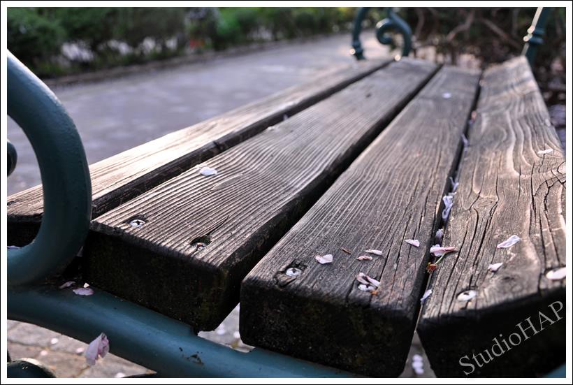 2011-04-14-1_0375.jpg