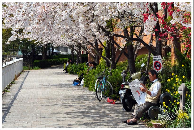2011-04-15-1_0015.jpg