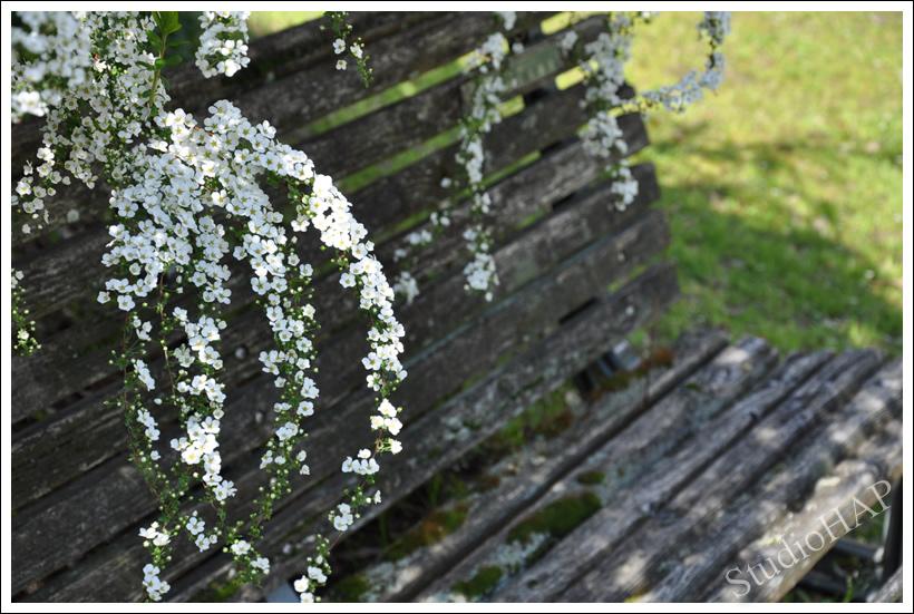 2011-04-18-1_3713.jpg