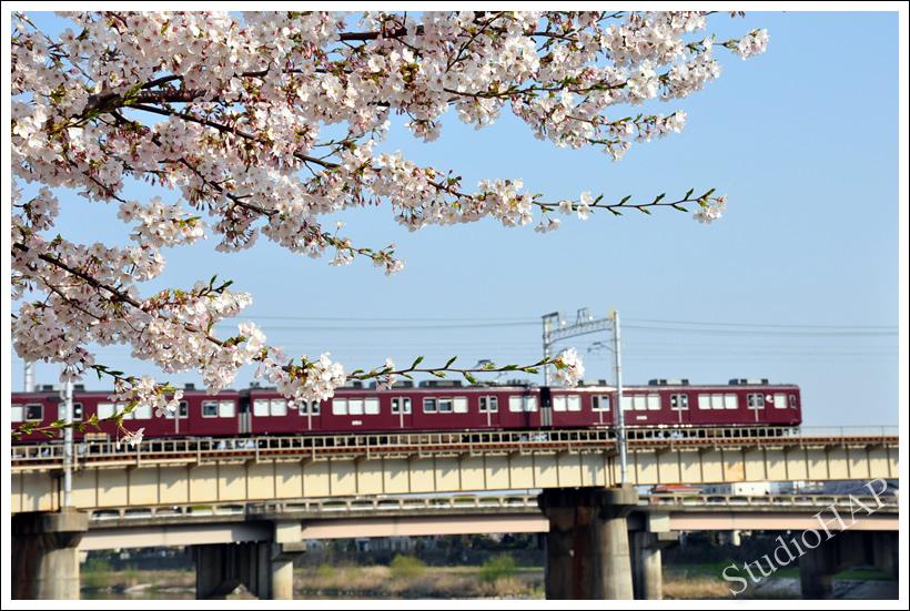 2011-04-22-1_0092.jpg