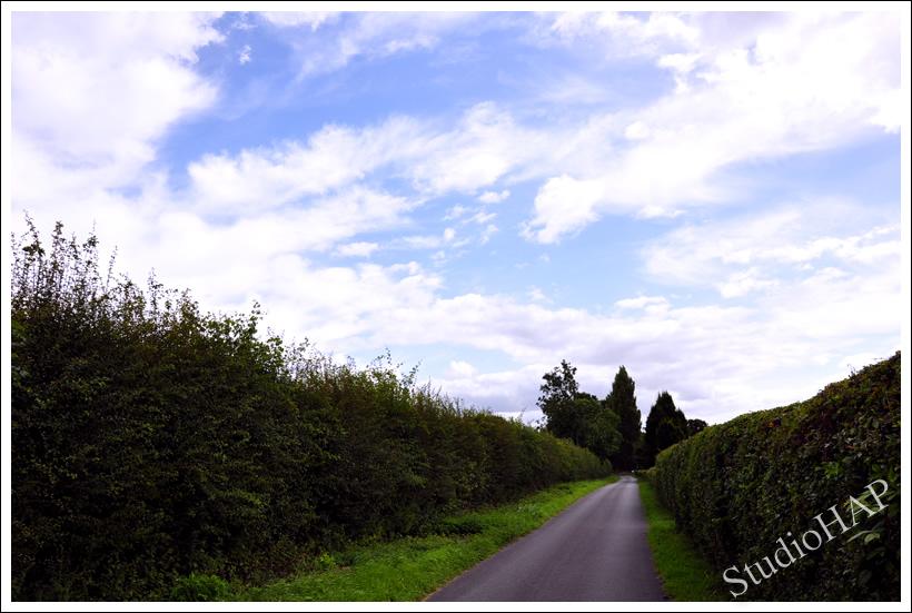 2011-07-03-1_1160.jpg