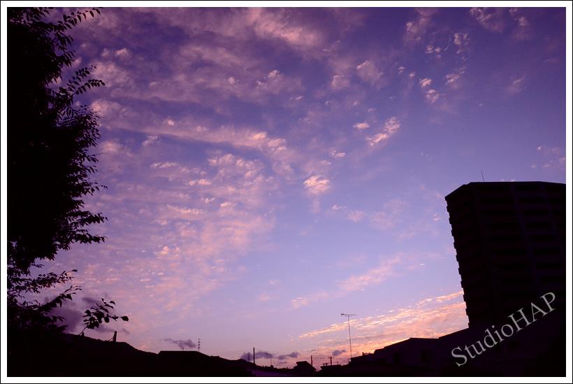 2011-09-08-1_4392.jpg