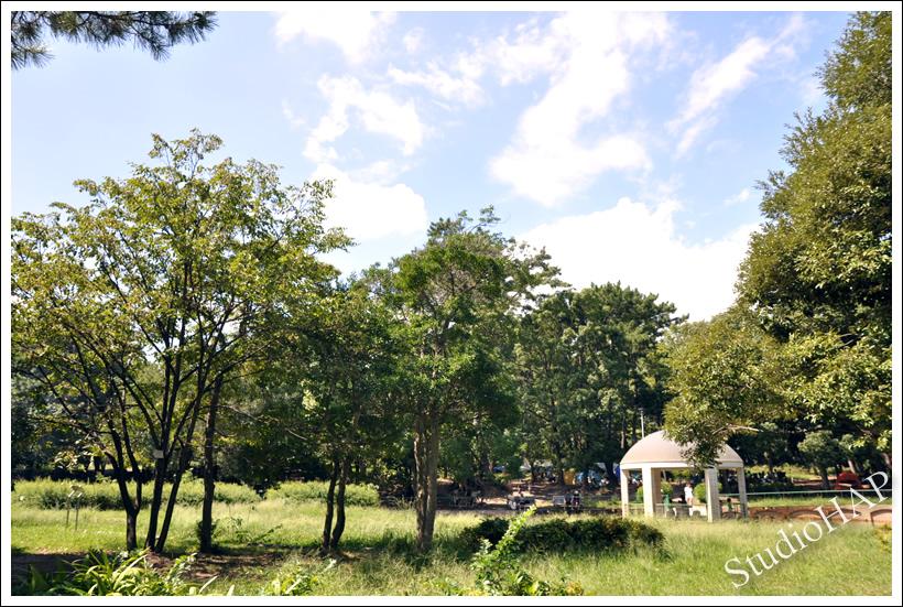 2011-09-23-1_5967.jpg