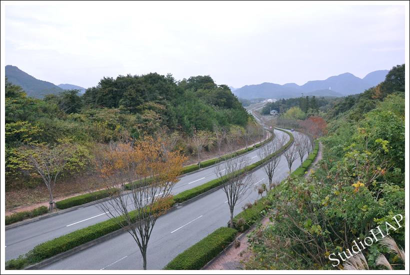 2011-11-05-1_7108.jpg