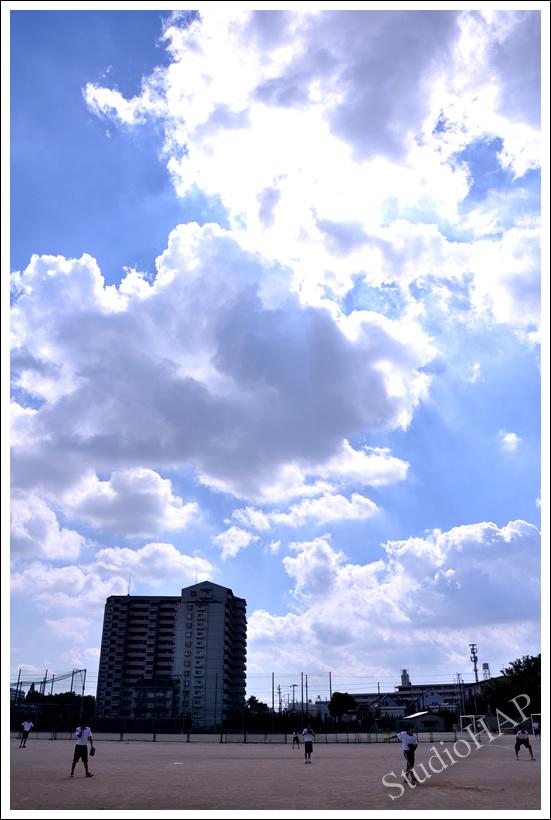 2011-11-15-1_4054.jpg