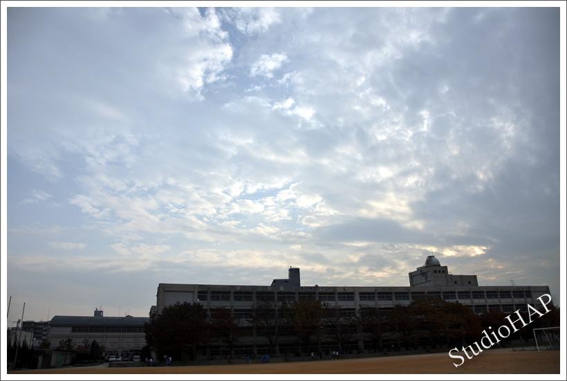 2011-12-01-1_7542.jpg