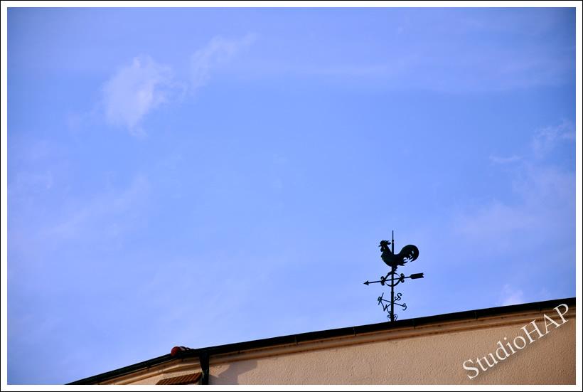 2011-12-13-1_1635.jpg