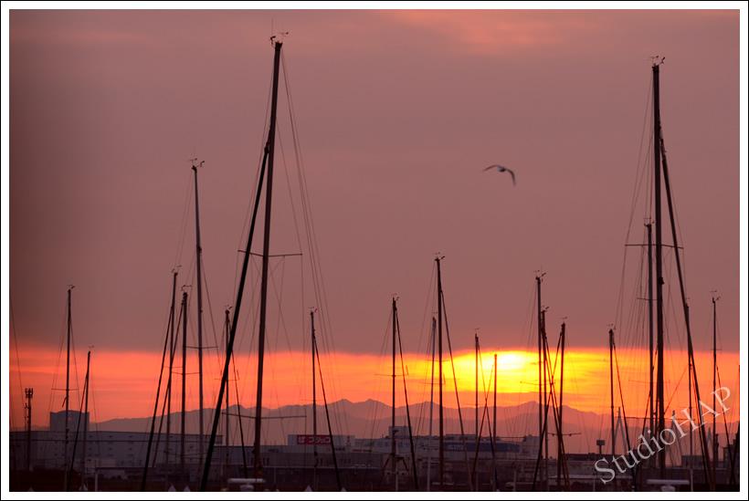 2012-01-13-1_7332.jpg