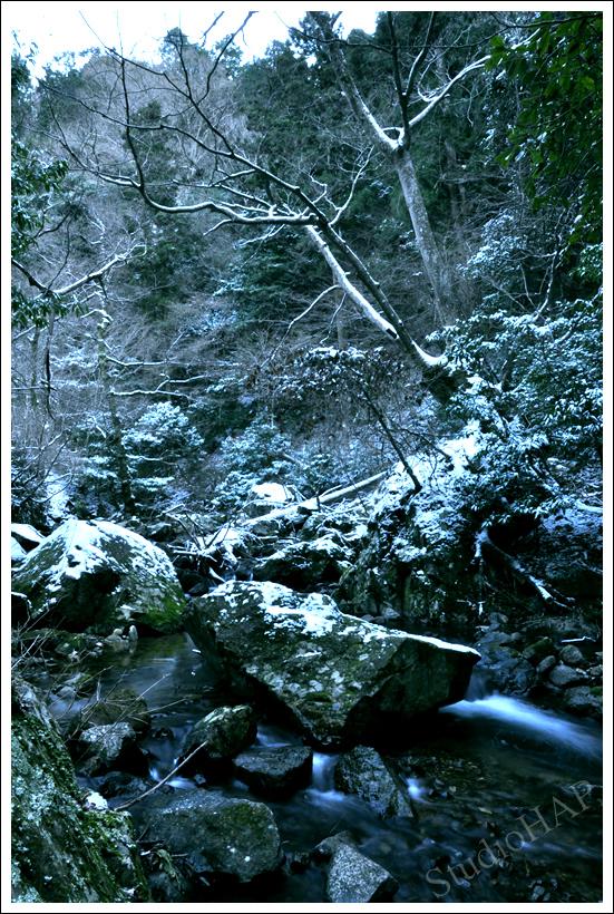 2012-02-18-1_9505.jpg