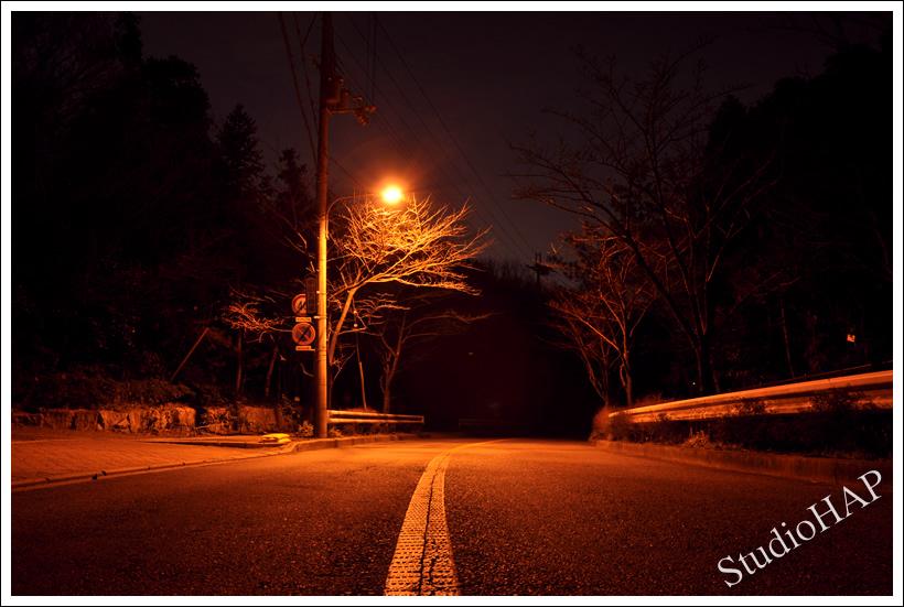 2012-02-24-1_0215.jpg