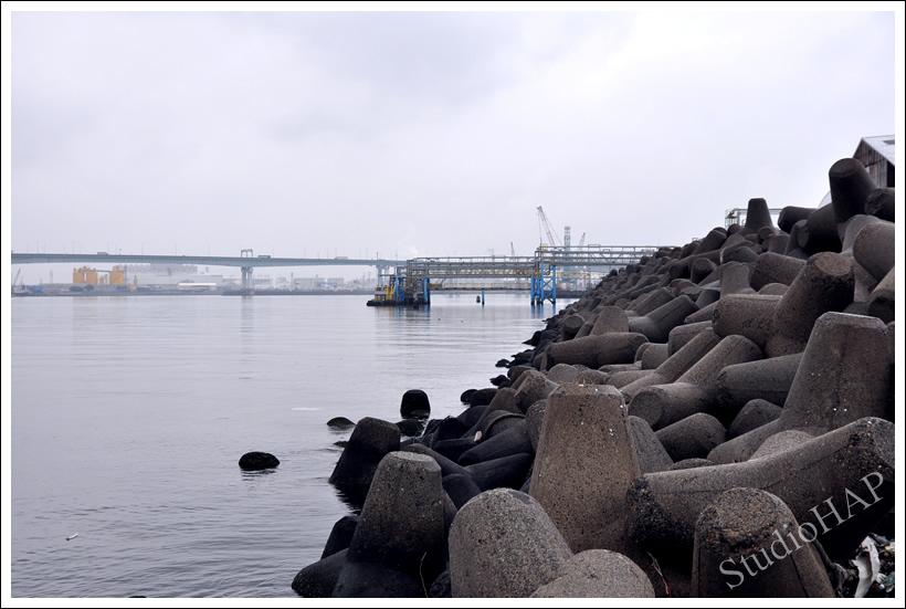 2012-03-26-1_0847.jpg