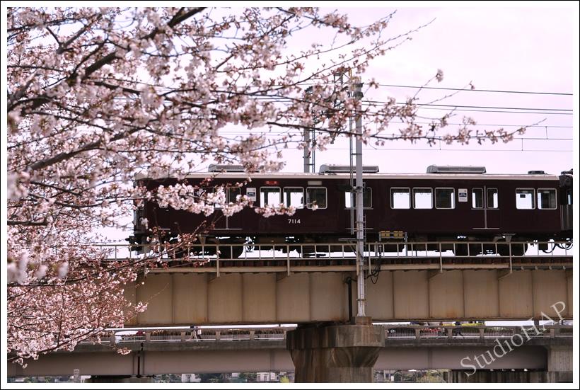 2012-04-11-1_1647.jpg