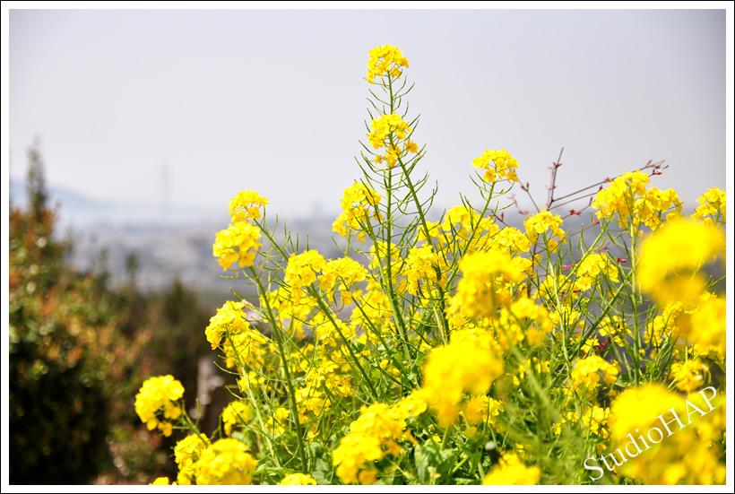 2012-04-19-1_1882.jpg