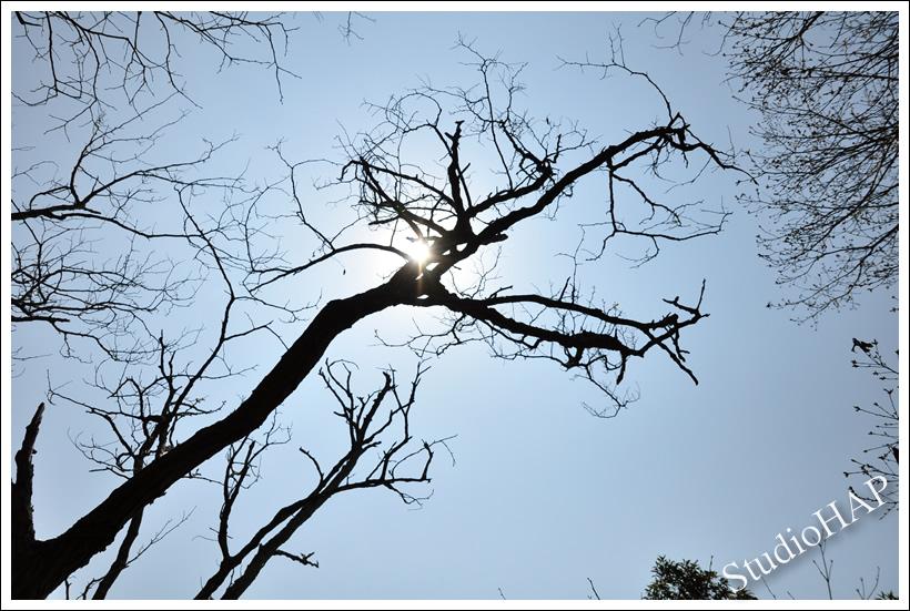 2012-04-22-1_1856.jpg