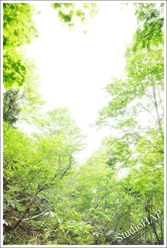 2012-06-09-1_3102.jpg
