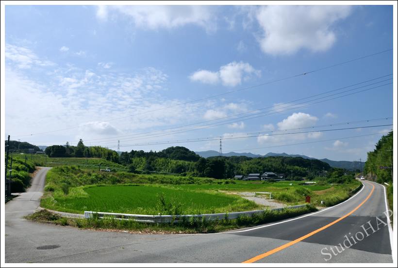 2012-07-10-1_3708.jpg