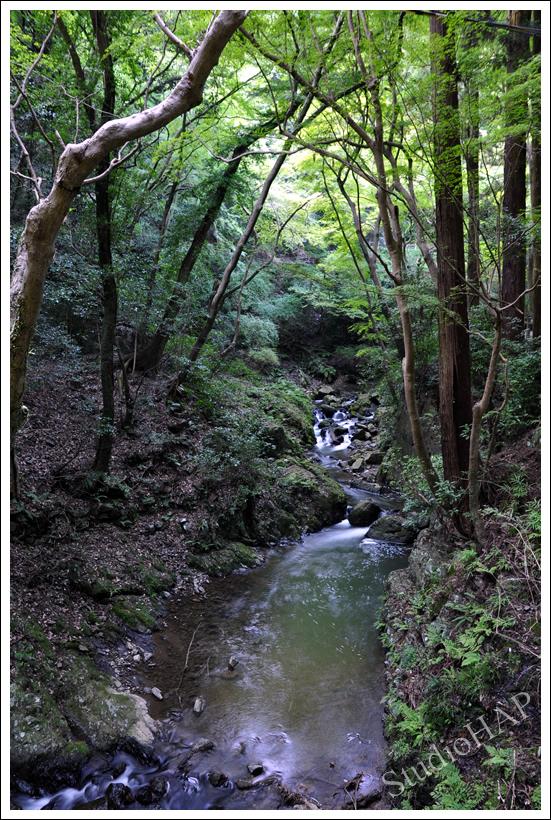 2012-10-21-1_5774.jpg