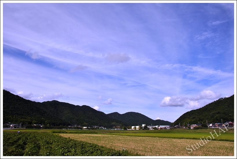 2012-10-24-1_5532.jpg