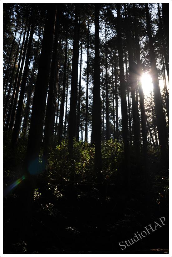 2012-10-28-1_5845.jpg