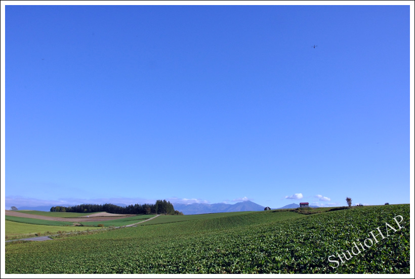 2012-12-07-1_1173.jpg