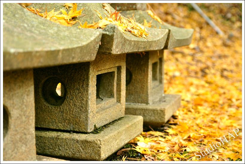 2012-12-10-1_6600.jpg