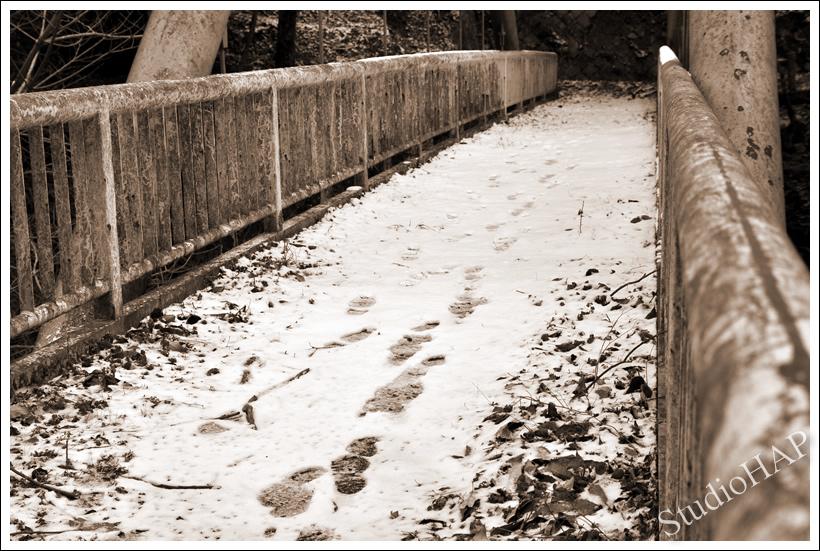 2013-01-18-1_9449.jpg