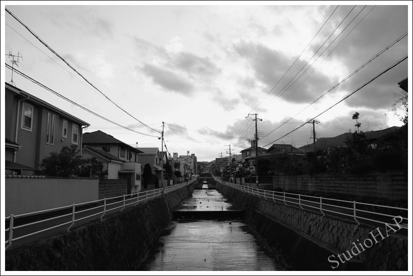 2013-02-25-1_3782.jpg