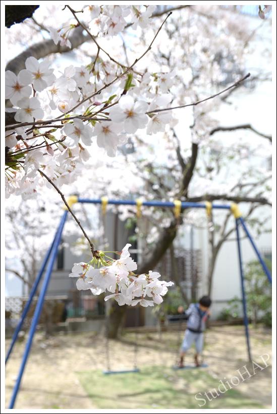 2014-04-02-1_4746.jpg